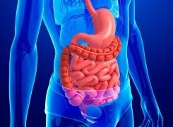 Trastornos funcionales digestivos